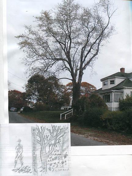 PI-tree_blog