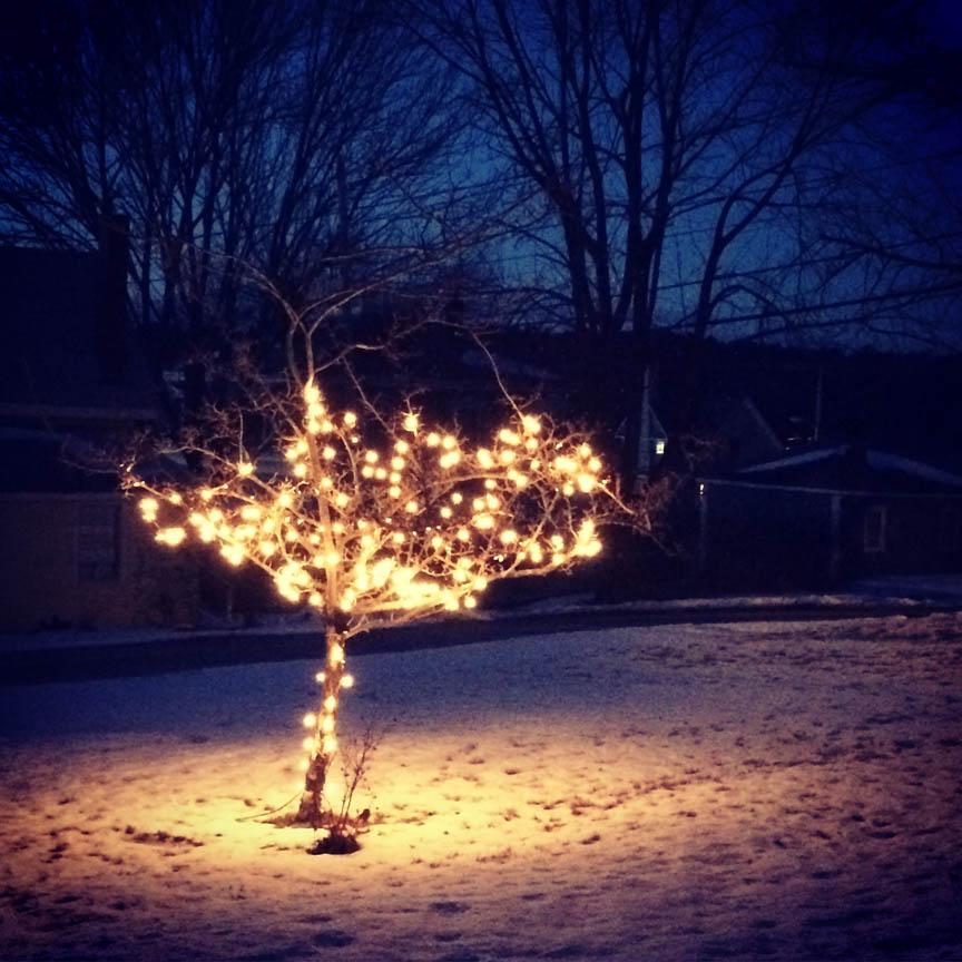 4-solstice_blog