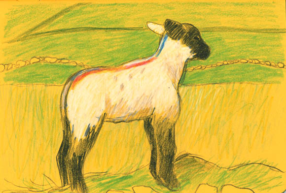 38-lamb_blog