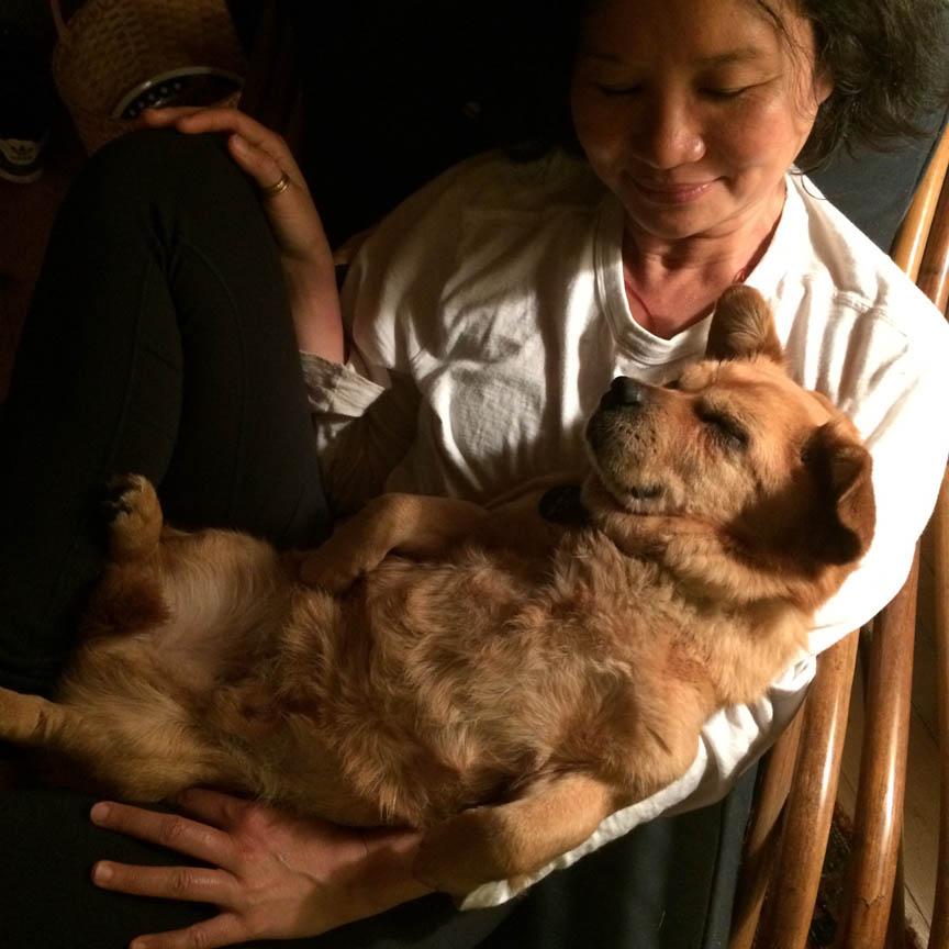 5-tofu_blog